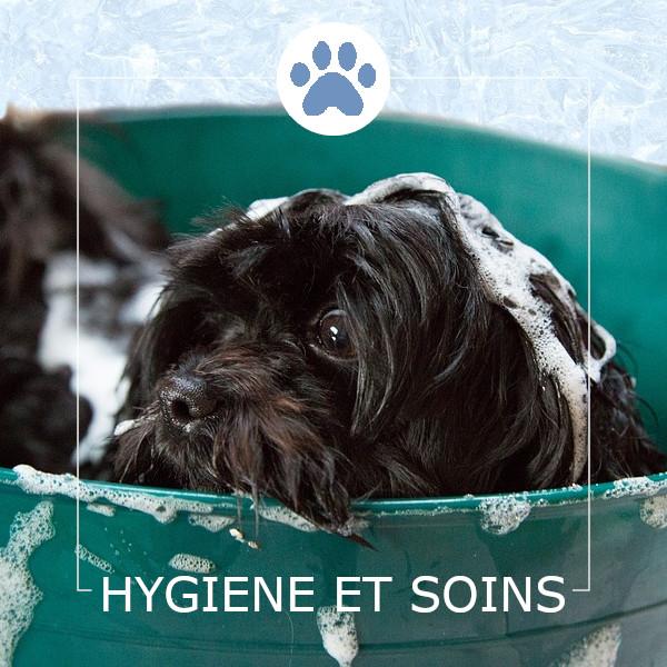 Hygiène et Soins